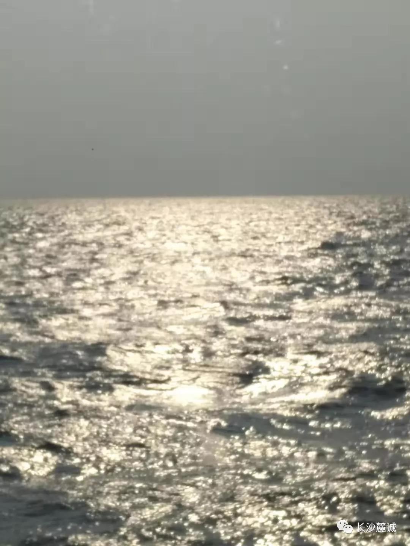 风雨四载,感恩有你!--记录麓诚北海之行